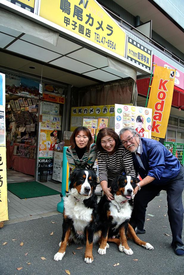 鳴尾カメラ 甲子園店 バーニーズマウンテンドッグ