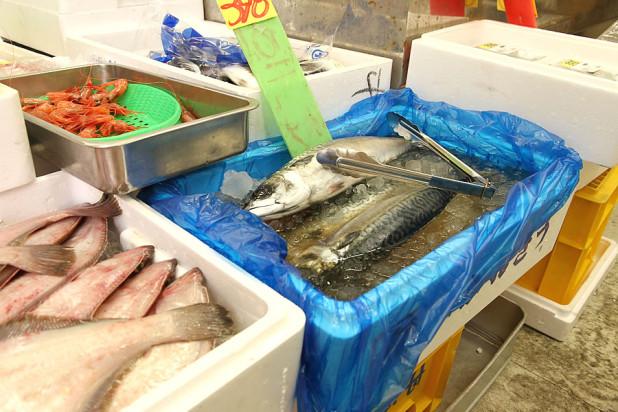イカした魚屋さん「タマヤ」